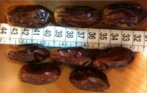 Import sayer dates
