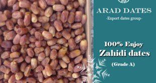 Iraqi Zahidi Dates