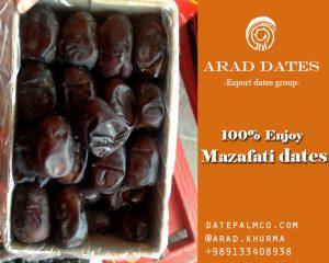 mazafati fresh date